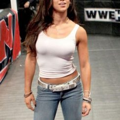 AJ Lee Body Measurements are 34-23-34